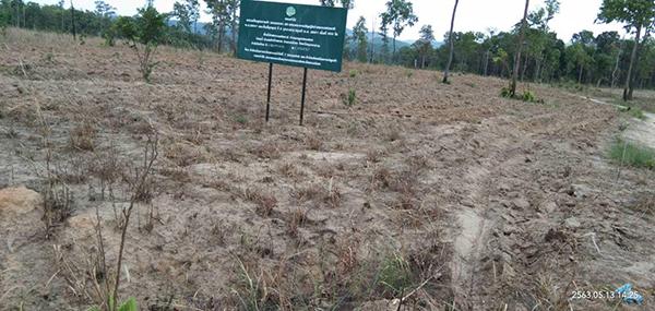 กลั่นแกล้งชาวบ้านช่วงคุมโควิด! ป่าไม้มุกฯ หน่วย มห.1 ขัดคำสั่งผู้ว่าฯ บุกไถที่ดินทำกิน อ้างนโยบายทวงคืนผืนป่า