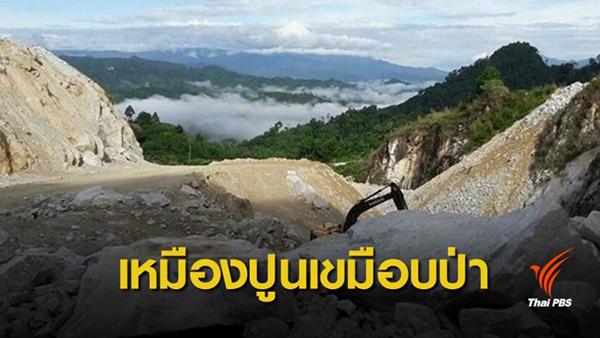 ความเห็นต่อกรณี  รัฐบาลออกมติคณะรัฐมนตรีให้ SCG เข้าทำประโยชน์ในเขตป่าสงวนแห่งชาติ