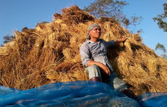 ชีวิตเกษตรกร