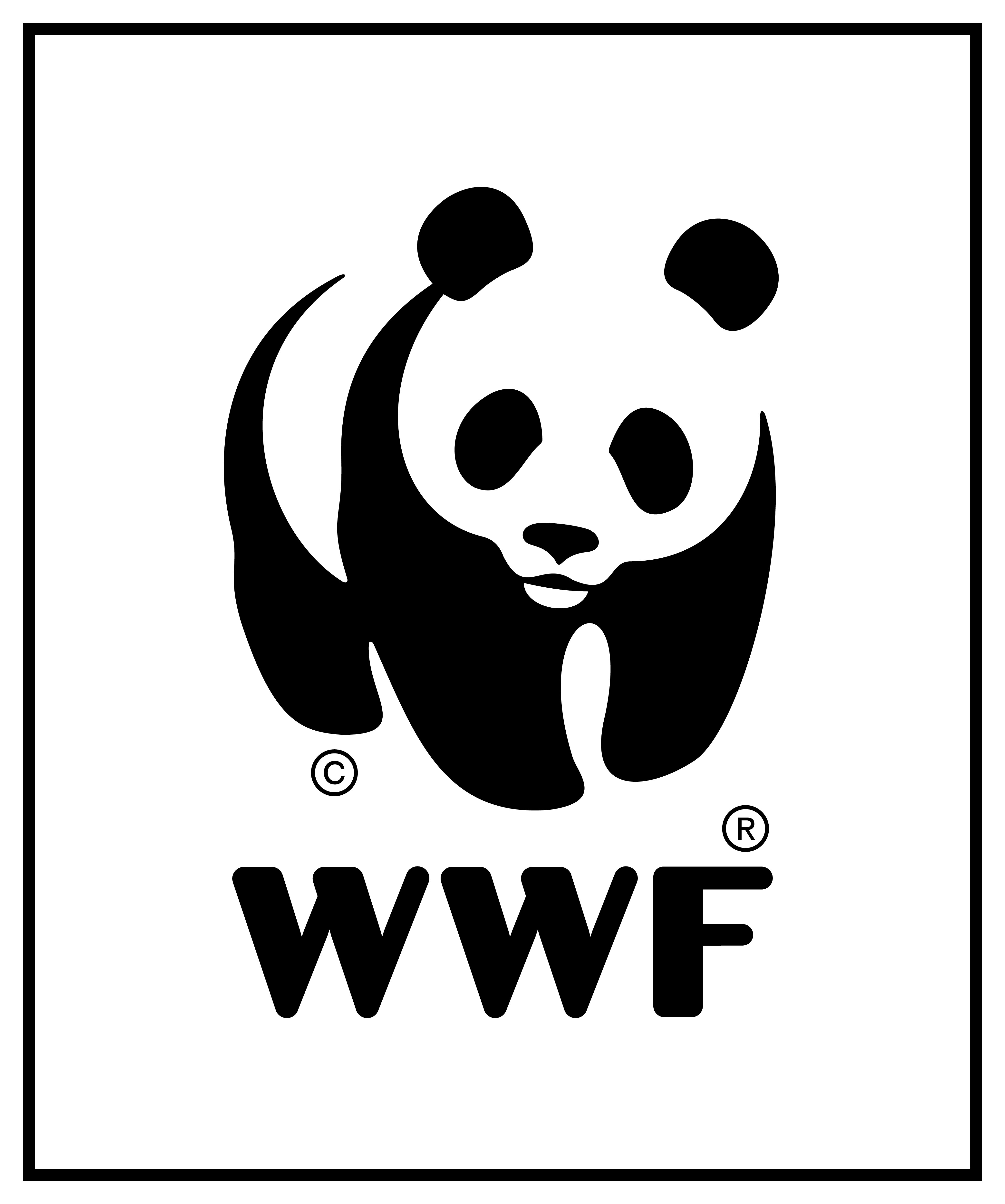 Senior Illegal Wildlife Trade Officer
