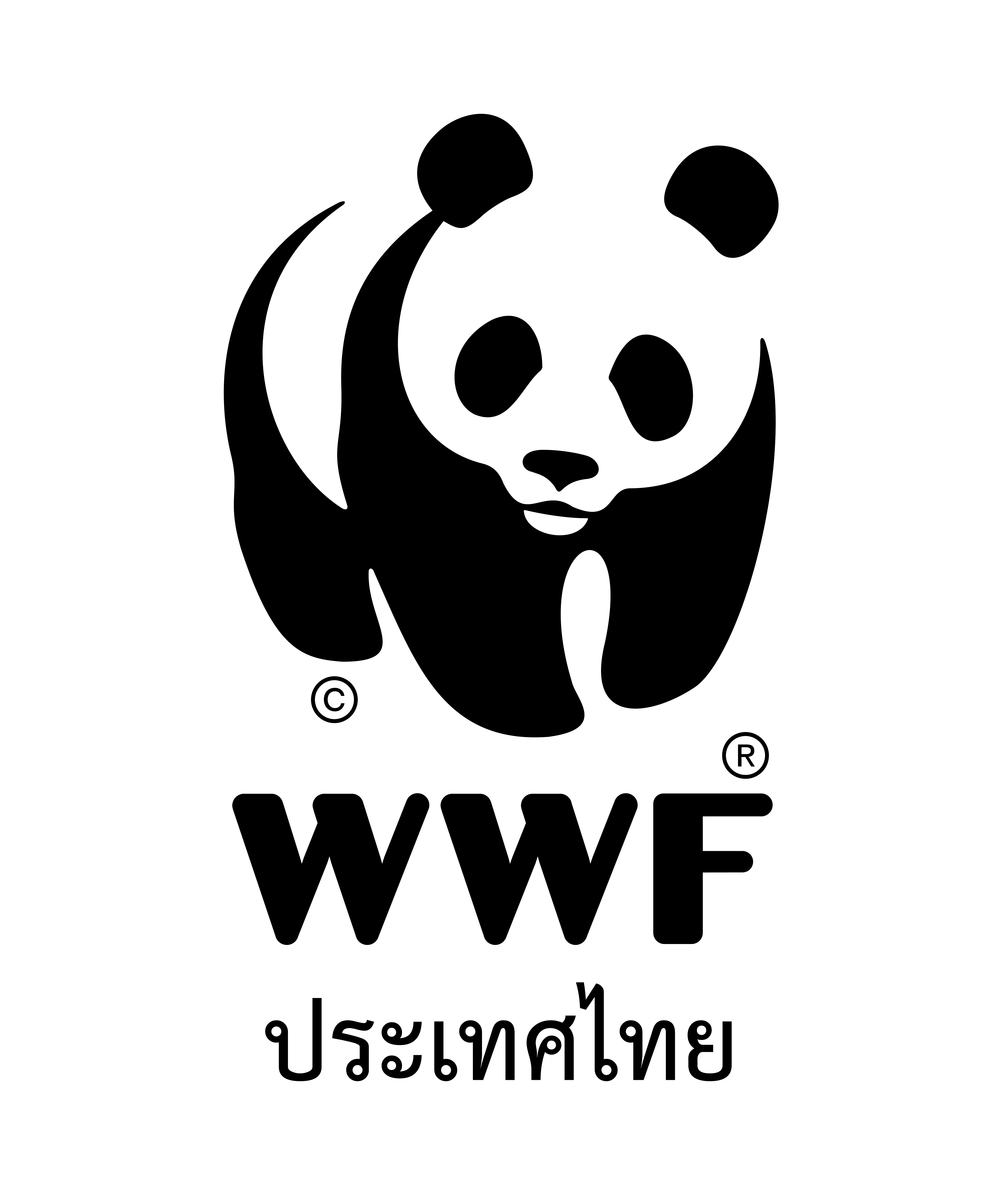 Tiger Lead, WWF Thailand Conservation Programme